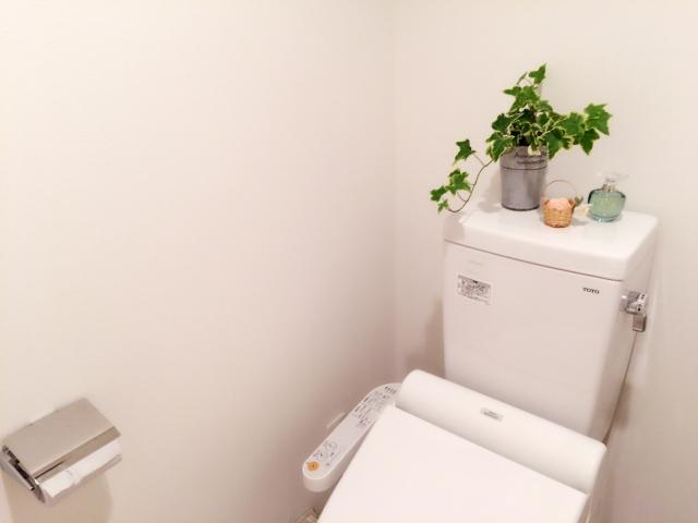 トイレ掃除はなぜ金運アップに効果があるのか?運気を上げる方法!