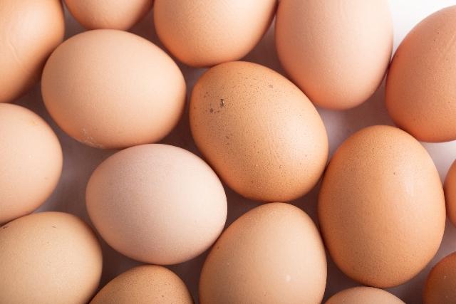 卵の賞味期限はいつまで?半熟卵は?冷蔵庫で何日まで平気か検証してみた!